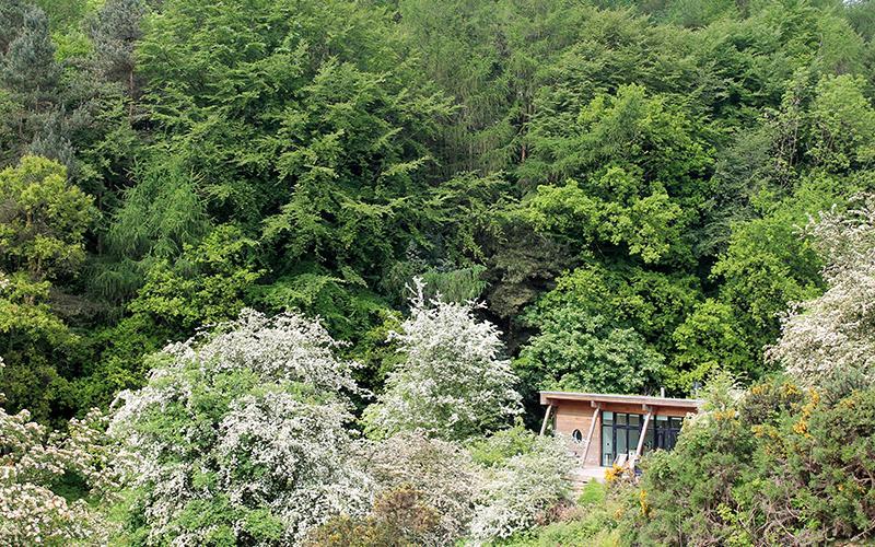 Lodge nestled into the hillside